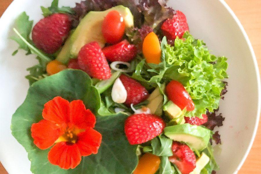 Fruchtig-pikanter Salat mit Erdbeeren - Rezeptbild | Gourmetköchin Petra Braun-Lichter
