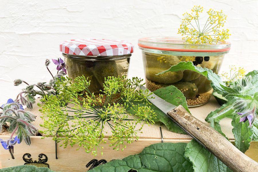 Eingelegte Gurken - Rezeptbild | Gourmetköchin Petra Braun-Lichter